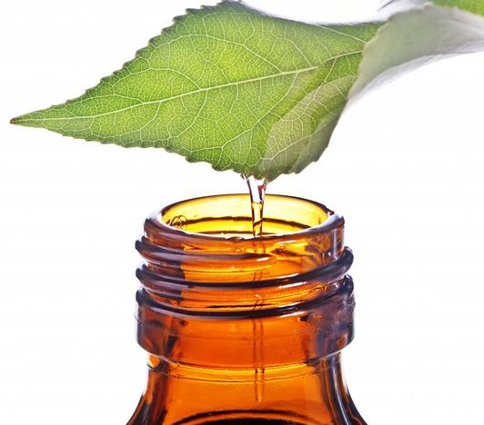 Pain relief with tea tree oil…