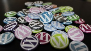 wordpress- Copy
